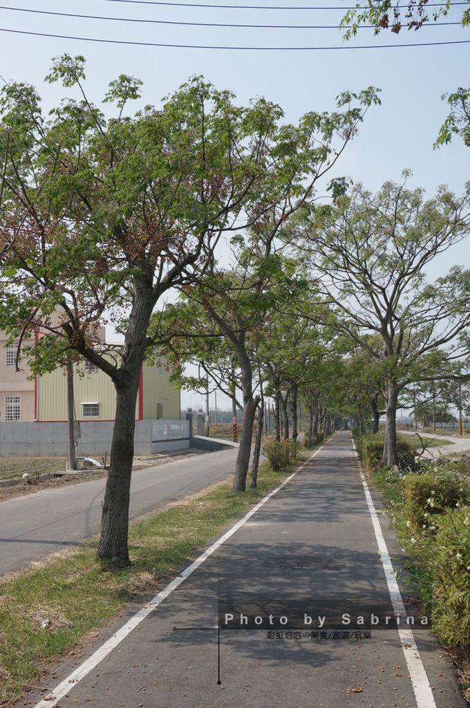 19.蒜頭糖廠-朴子溪自行車道
