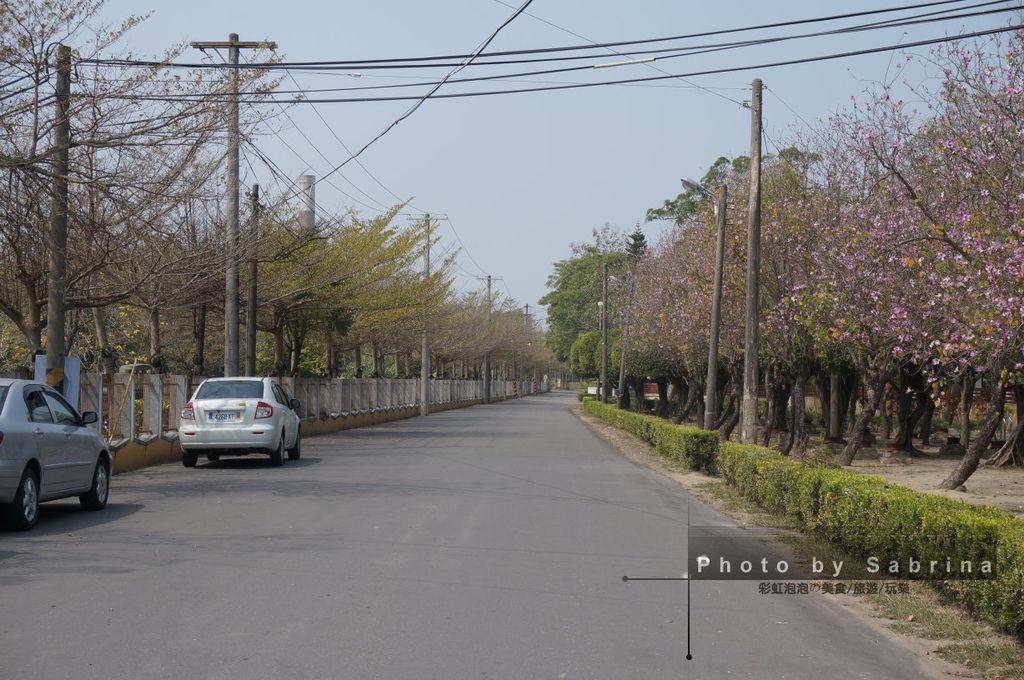 9.蒜頭糖廠-朴子溪自行車道