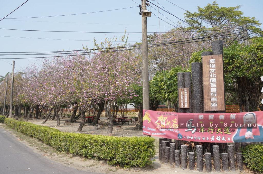 8.蒜頭糖廠-朴子溪自行車道