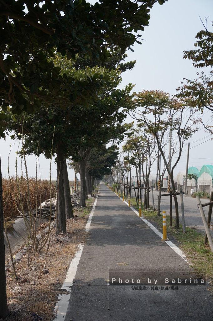 28.蒜頭糖廠-朴子溪自行車道