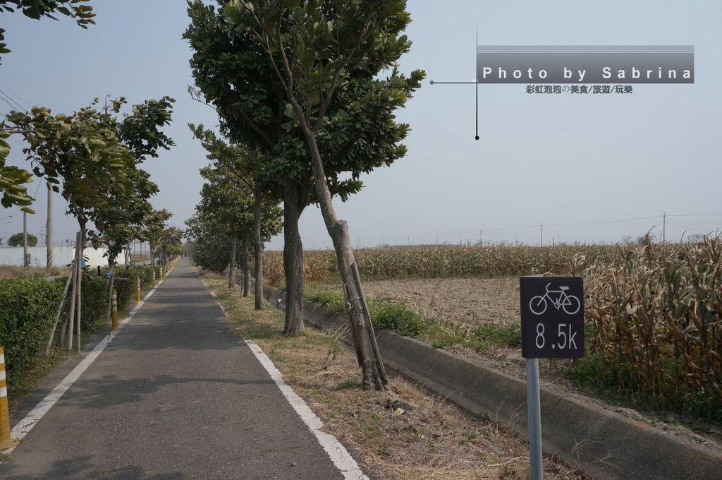 29.蒜頭糖廠-朴子溪自行車道