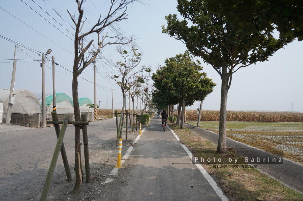 32.蒜頭糖廠-朴子溪自行車道