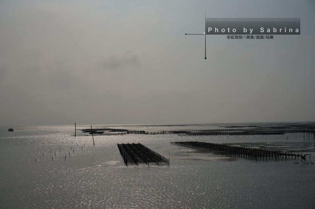 12.東石漁港蚵棚