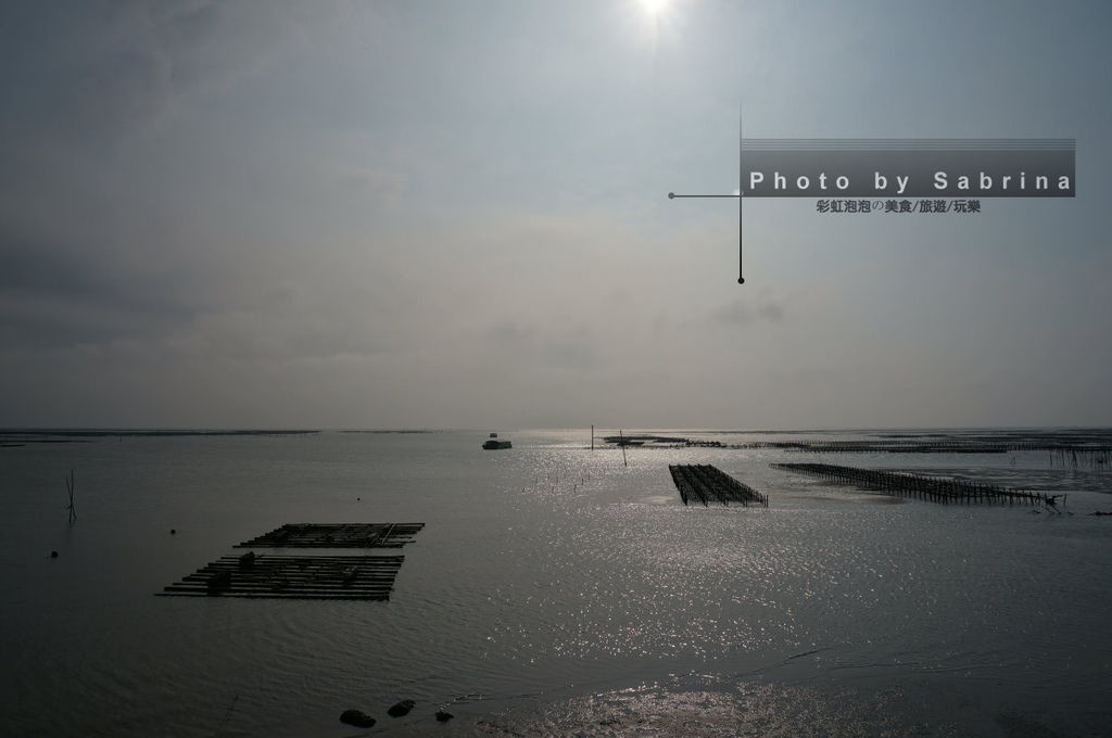 11.東石漁港蚵棚