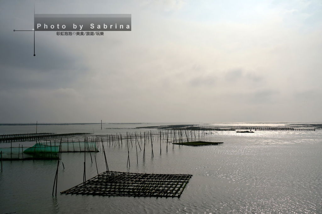 13.東石漁港蚵棚