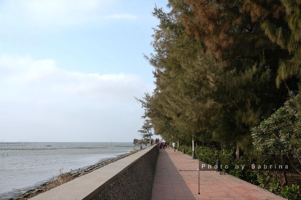 14.斜陽木棧道