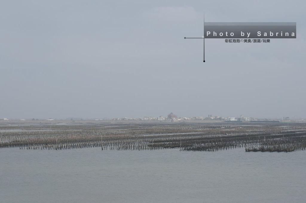 6.東石漁港蚵棚