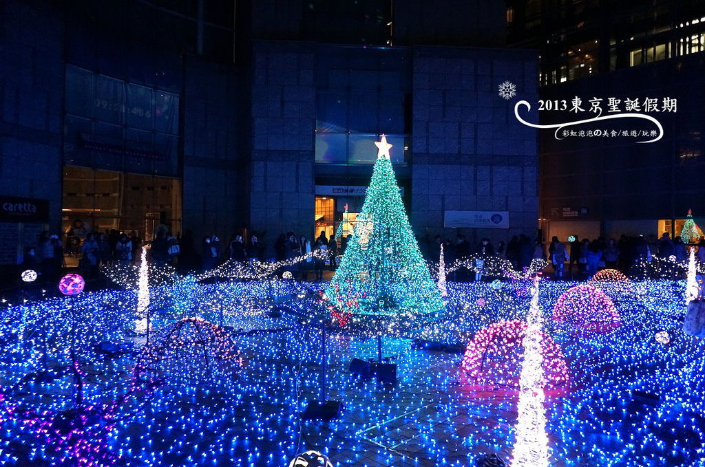 183.Caretta Illumination 2013