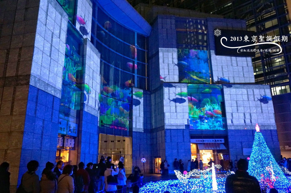 178.Caretta Illumination 2013