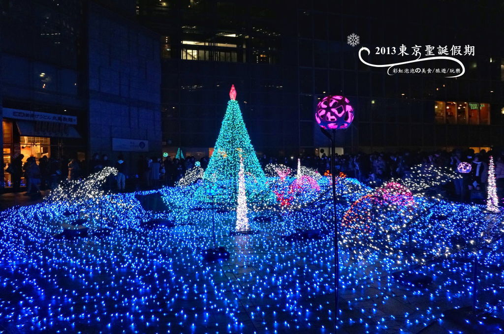 180.Caretta Illumination 2013