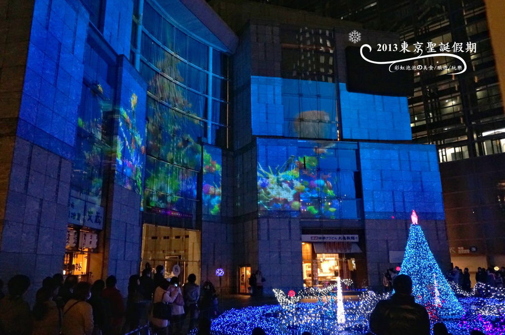 177.Caretta Illumination 2013