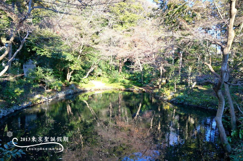 233.鶴岡八幡宮-柳原神池