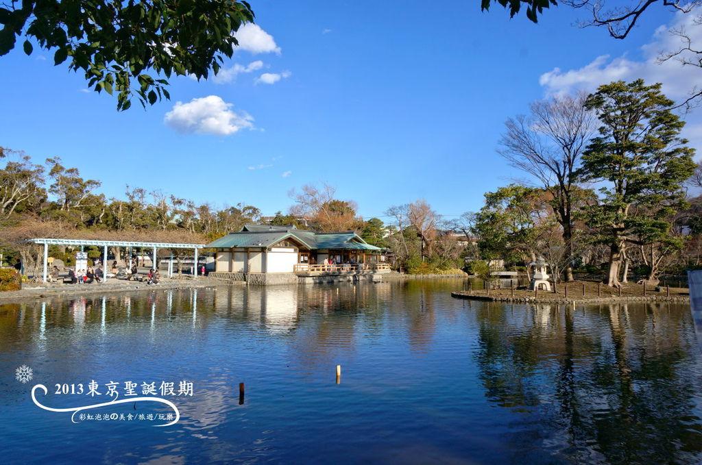 238.鶴岡八幡宮-源平池