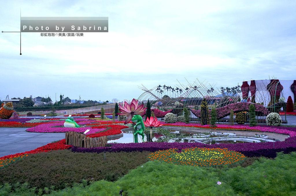 8.2014新社花海-台中國際花毯節