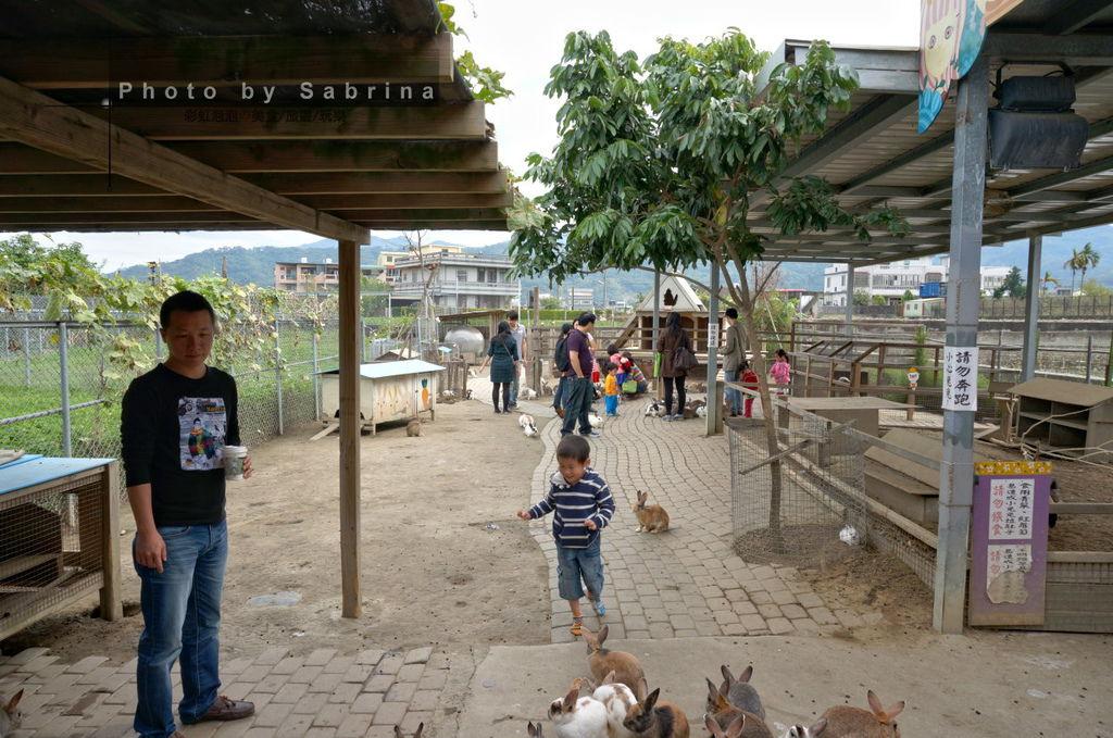 6.棗莊-小動物的家