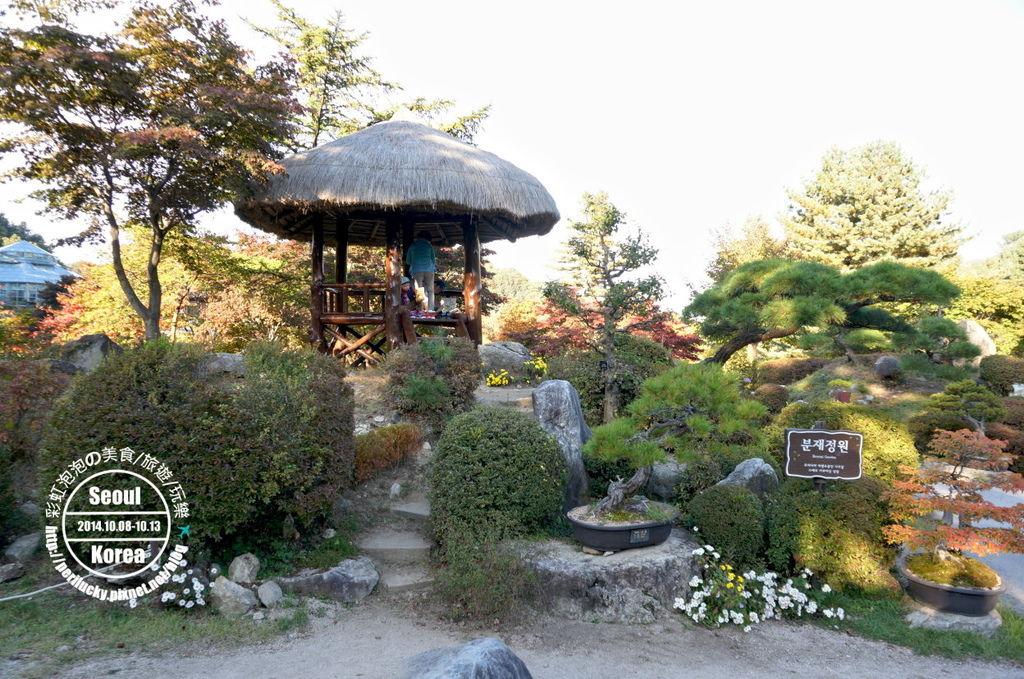 125.晨靜樹木園-盆栽庭園