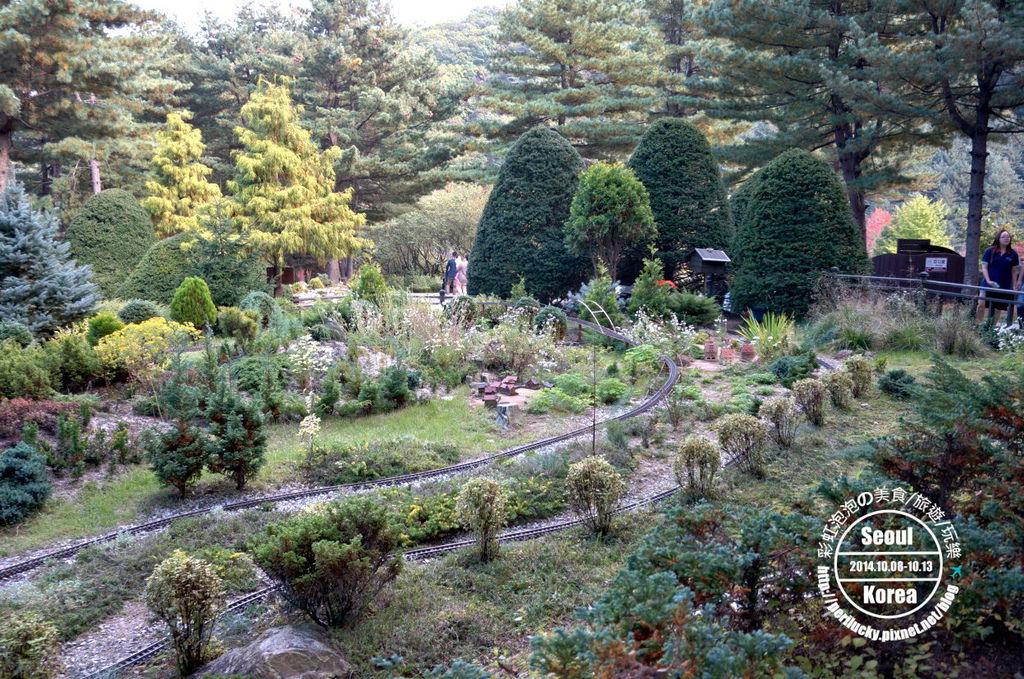 130.晨靜樹木園-針葉樹庭園