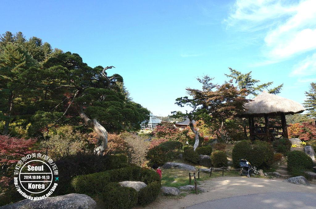 126.晨靜樹木園-盆栽庭園