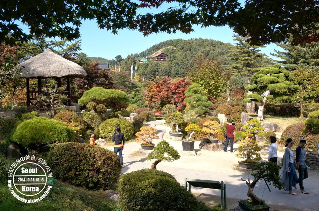 124.晨靜樹木園-盆栽庭園