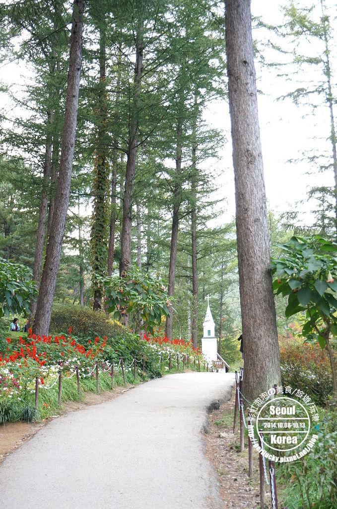 140.晨靜樹木園-向天的路