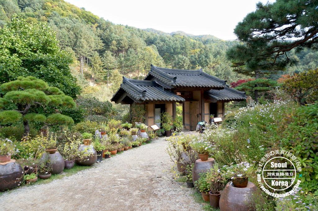 154.晨靜樹木園-韓國庭園