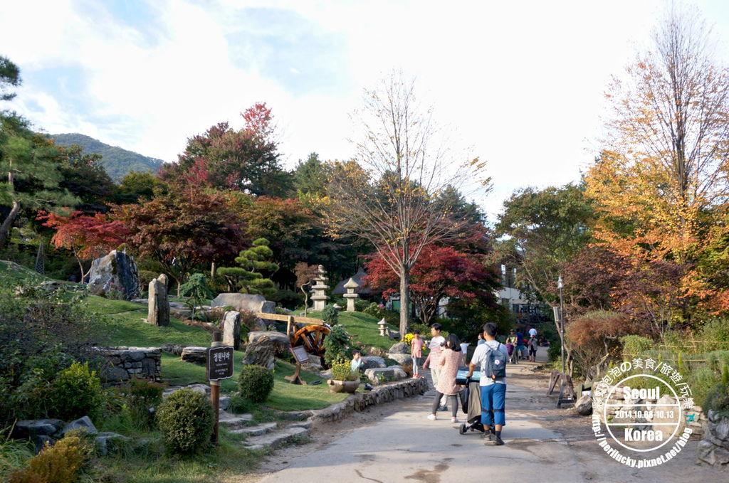 165.晨靜樹木園-小庭園