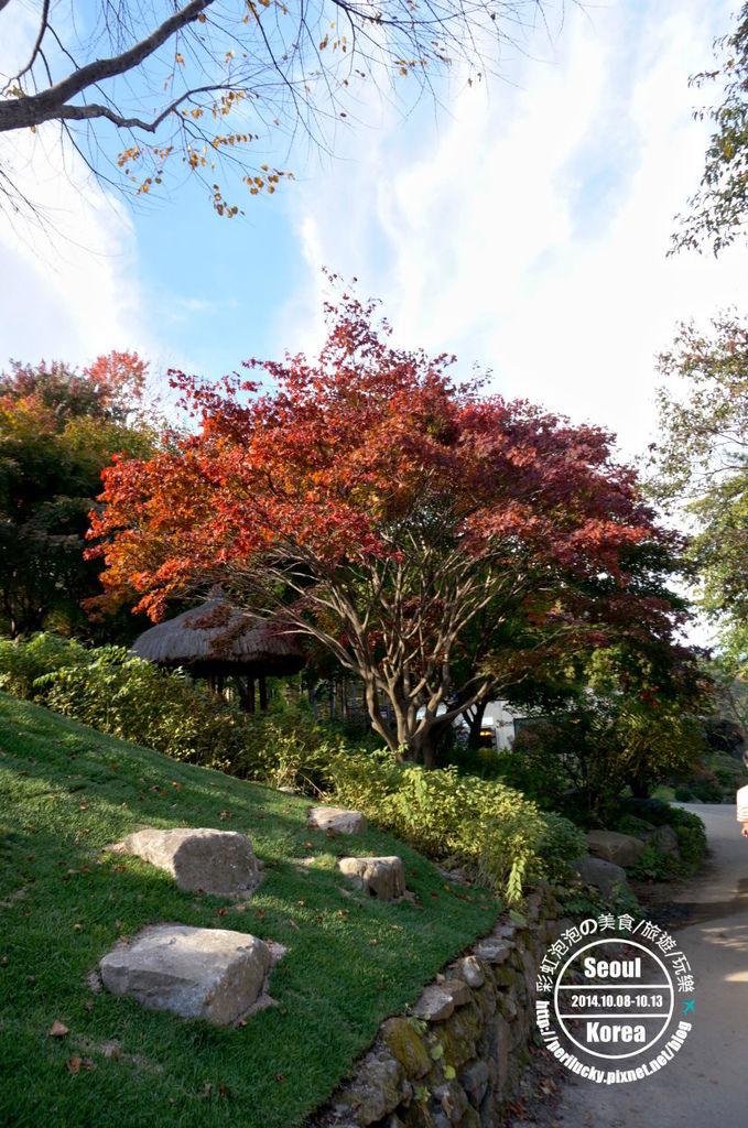 167.晨靜樹木園