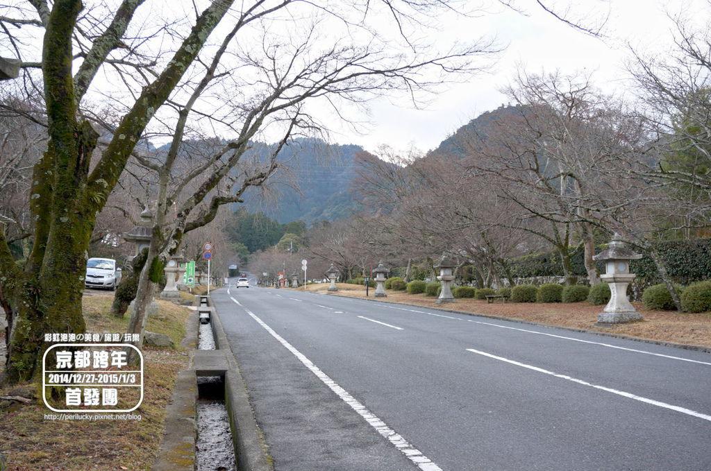 129.日吉大社-表參道.jpg