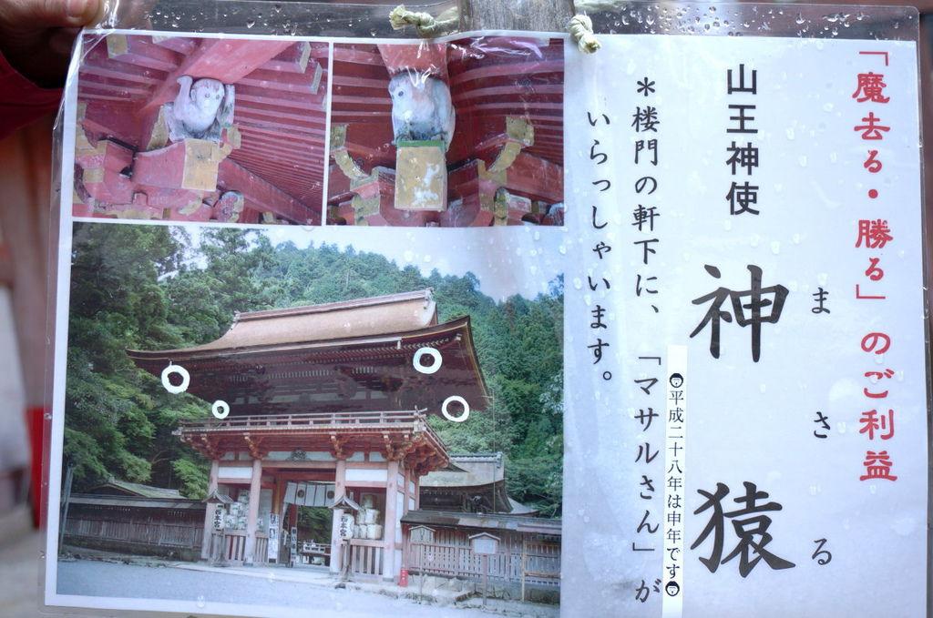 148.日吉大社-山王神使-神猿.jpg