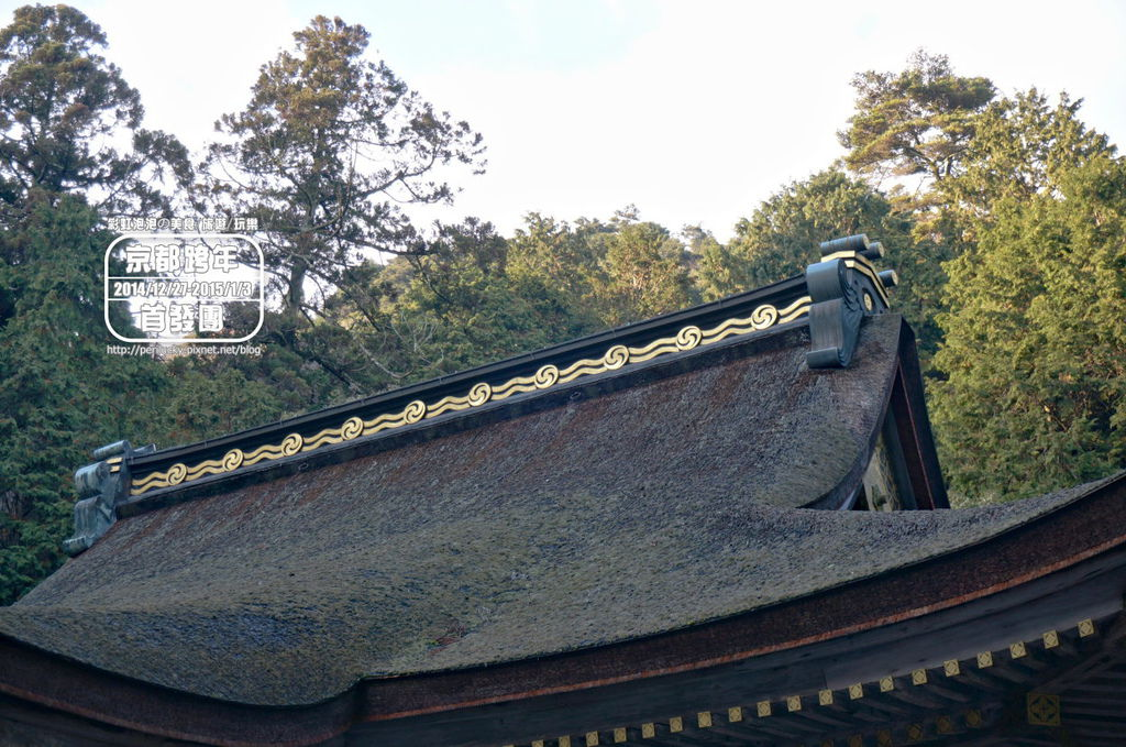 156.日吉大社-西本宮本殿屋頂.jpg