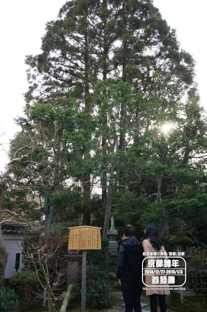 111.平等院-源賴政之墓.jpg