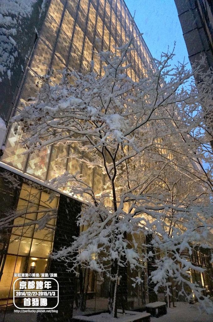 37.京都暴雪.jpg
