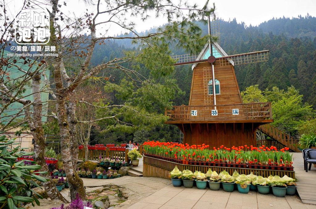 41.杉林溪森林生態渡假園區-藥用植物園.jpg