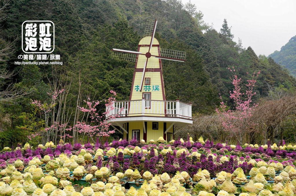 43.杉林溪森林生態渡假園區-內花園.jpg