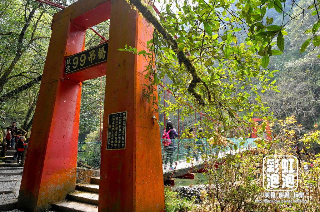 47.杉林溪森林生態渡假園區-九九吊橋.jpg