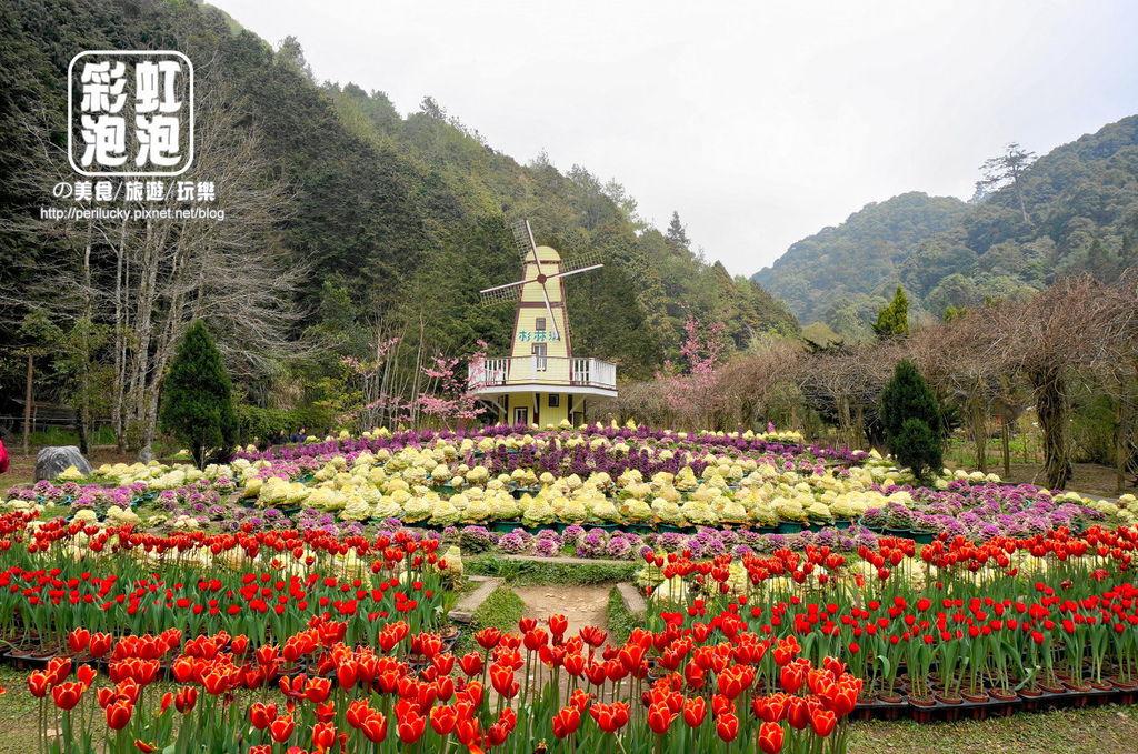 42.杉林溪森林生態渡假園區-內花園.jpg