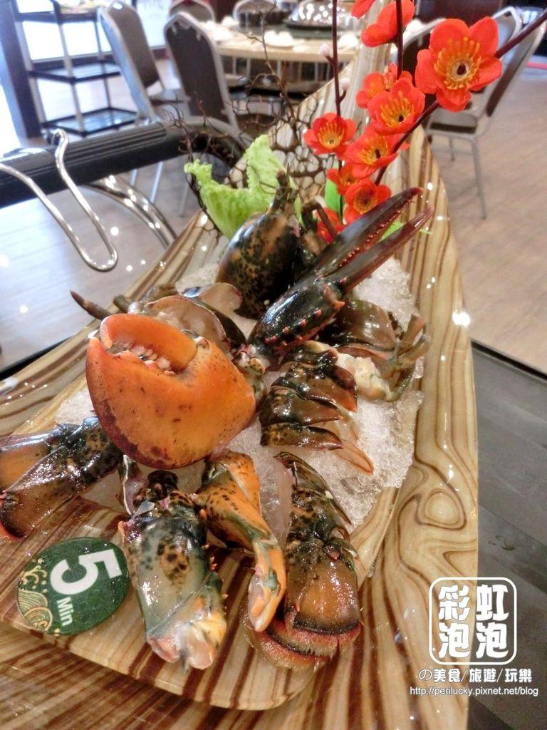 31.鼎陶蒸 蒸汽海鮮鍋物-波士頓龍蝦.jpg