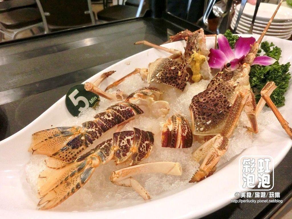 32.鼎陶蒸 蒸汽海鮮鍋物-黃金龍蝦.jpg