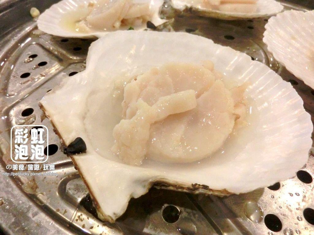 46.鼎陶蒸 蒸汽海鮮鍋物-日本扇貝.jpg