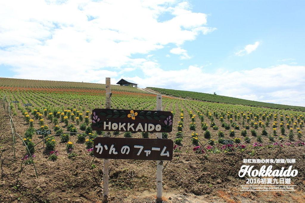2.北海道富良野-菅野農場.jpg