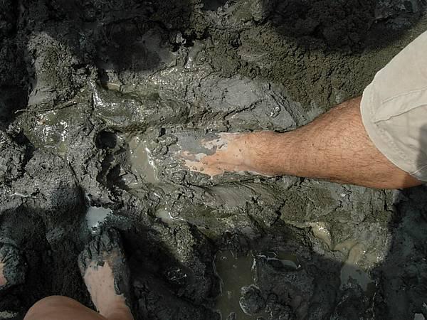 猜猜誰的泥腳.JPG