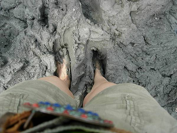 柔軟的泥.JPG