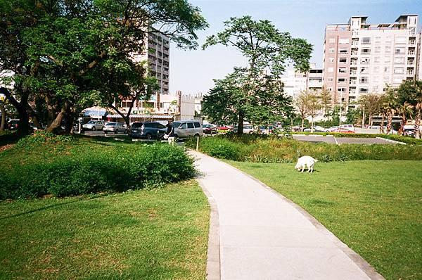 公園內通往停車場的一角