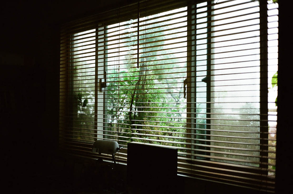 shot with minolta hi-matic 11_007.JPG