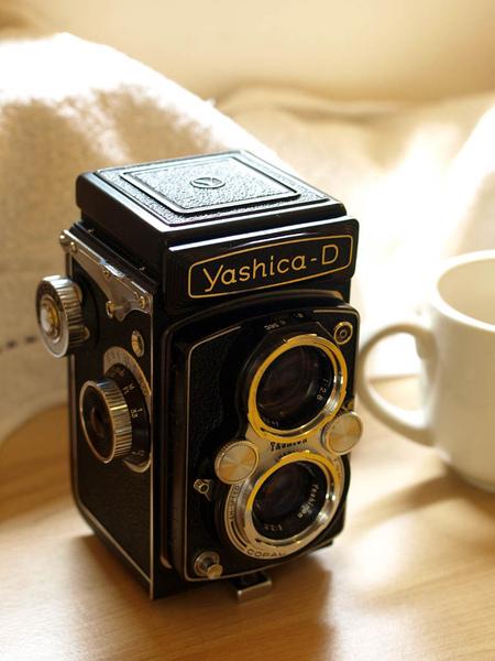 Yashica D.jpg