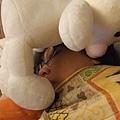 章魚跟小豬都睡死了