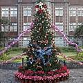 師大聖誕樹