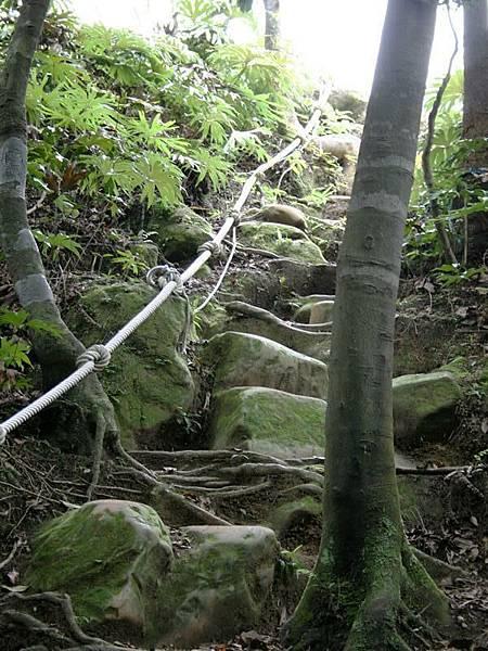 這就是一段爬坡路 還要拉繩子