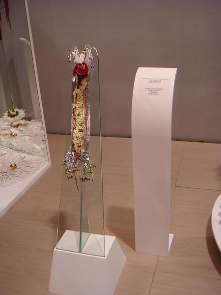 2011-洲際盃花藝大賽 (23).JPG