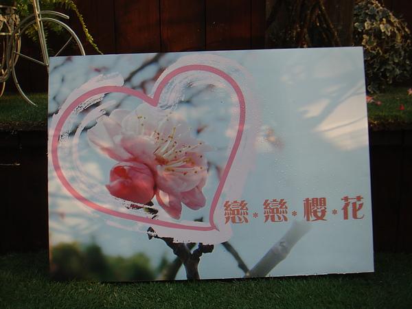 2011青年公園花藝展李清海設計師 (31).JPG